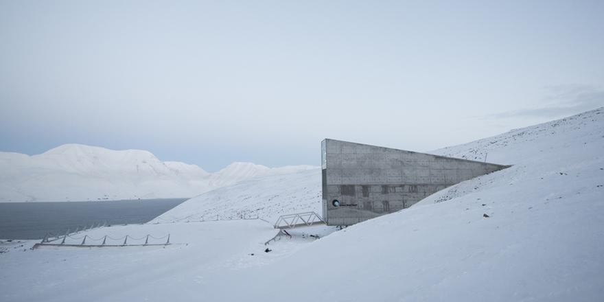 Svalbard Main Crop